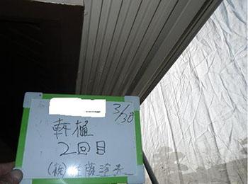 軒樋 塗装2回目