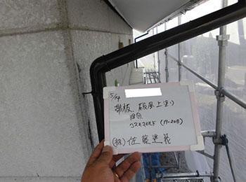 柱・竪樋 上塗り1回目