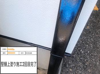 竪樋 塗装2回目